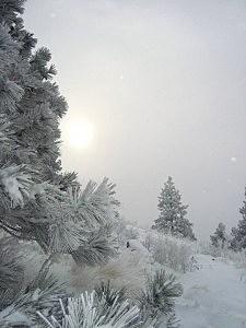 Winter on Mt. Sentinel