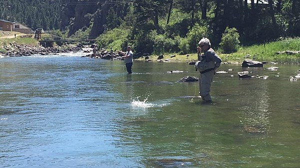 Fly fishing the lower upper madison river for Upper madison fishing report