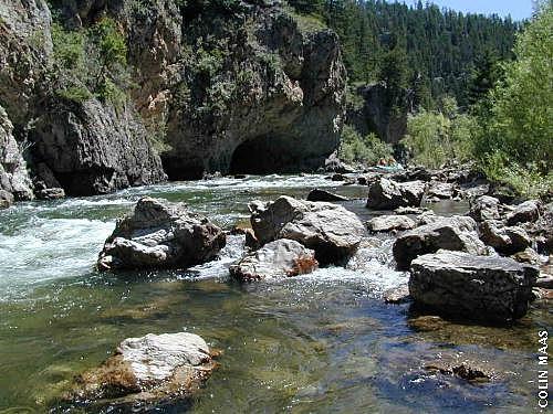 Photo courtesy of FWP Montana via http://fwp.mt.gov/fwpImageDetail.jsp?11617
